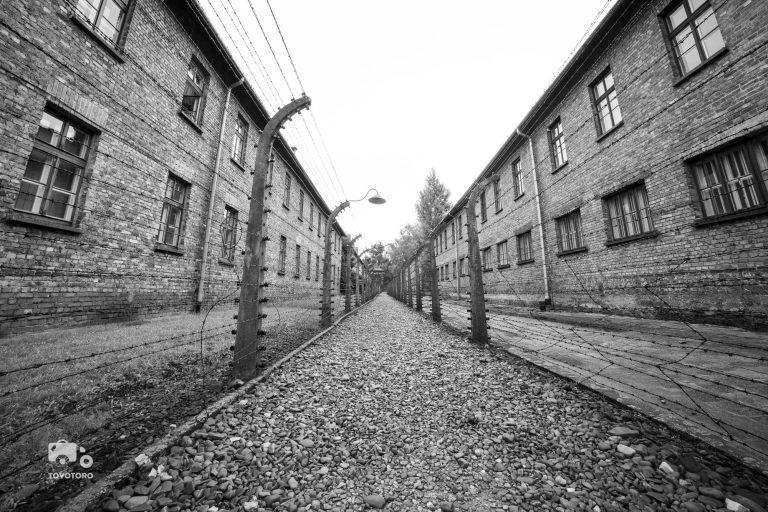Between barracks in Auschwitz I